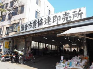 【レンバイ】鎌倉駅すぐ。新鮮な鎌倉野菜が農家さんから直接買える農協連即売所