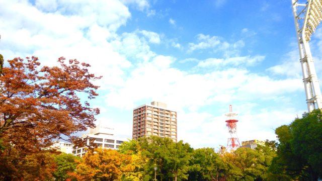 横浜公園の紅葉