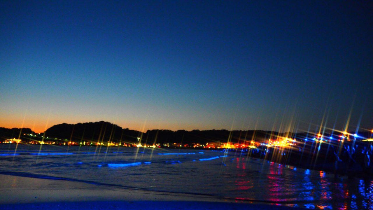 NIGHT WAVE光の波プロジェクト in 鎌倉