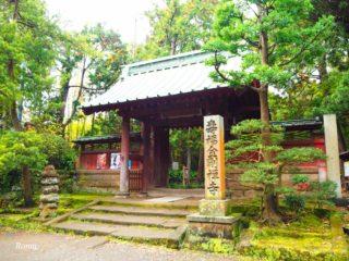 鎌倉の寿福寺