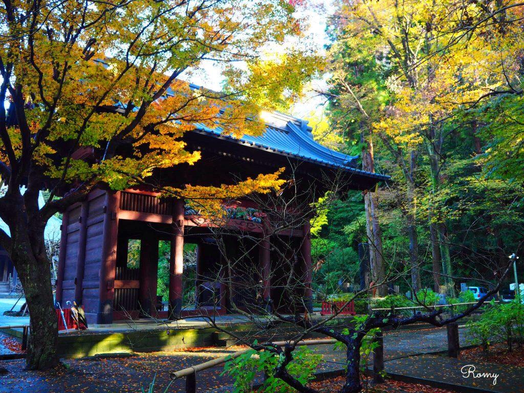 鎌倉・妙本寺の紅葉