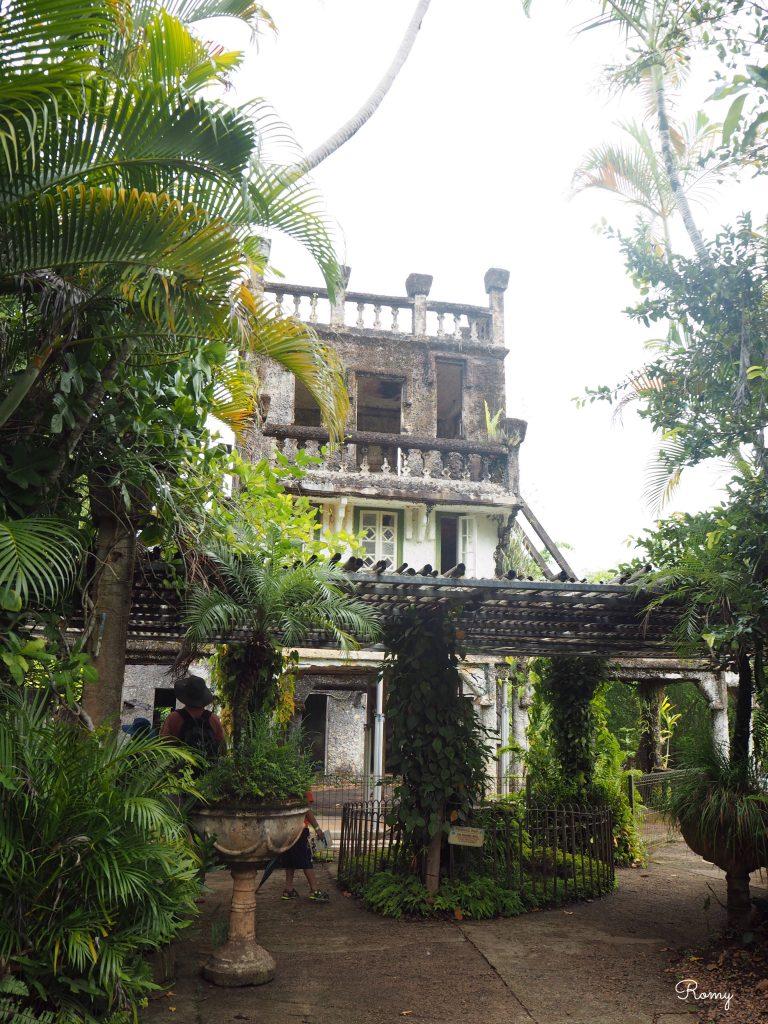 ケアンズの熱帯雨林ツアー「パロネラパーク」