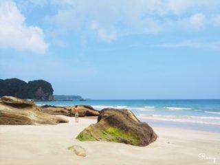 家族で伊豆旅行へ!下田の人気サーフポイント「多々戸浜」を初心者目線でレポ