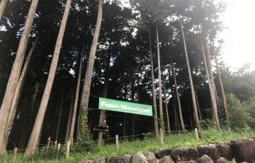 森の中のアスレチック「フォレストアドベンチャー小田原」