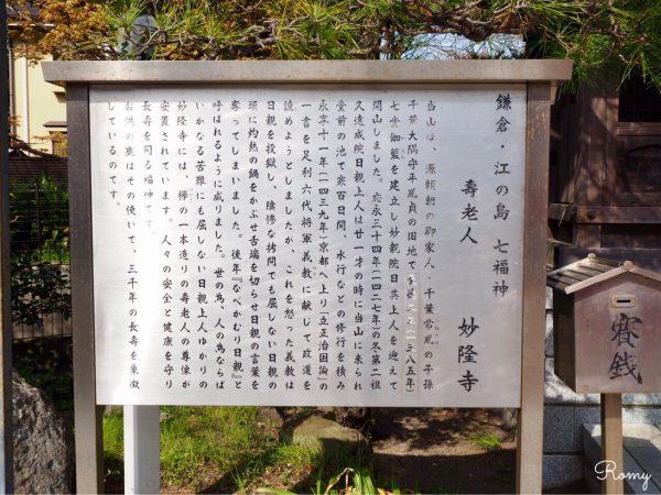 鎌倉・小町「妙隆寺」