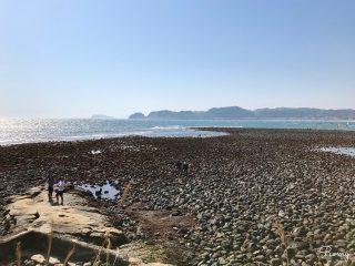鎌倉・材木座海岸奥の「和賀江島」で磯遊びやビーチコーミングしよう♪ 干潮時の玉石群はすごい!