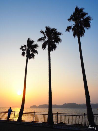 逗子マリーナ「小坪飯島公園」の夕焼け