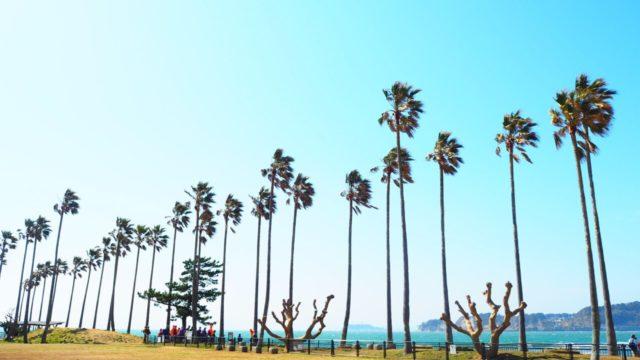 逗子マリーナの「小坪飯島公園」