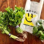 鎌倉市農協連即売所「レンバイ」の鎌倉野菜