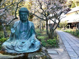 【東慶寺完全ガイド】北鎌倉の縁切り寺・駆け込み寺。季節の花々と豊かな自然が魅力!