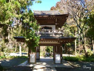 【浄智寺完全ガイド】北鎌倉にある鎌倉五山第4位のお寺。鎌倉江の島七福神の布袋尊も!