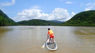 西表島の浦内川でマングローブSUP