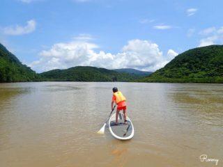 西表島の浦内川でマングローブSUP体験!ガイドは「Waterplayerz(ウォータープレイヤーズ)」