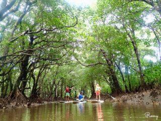 初の離島!竹富島・西表島・石垣島へ家族旅行3泊4日の全行程と旅行記一覧、感想