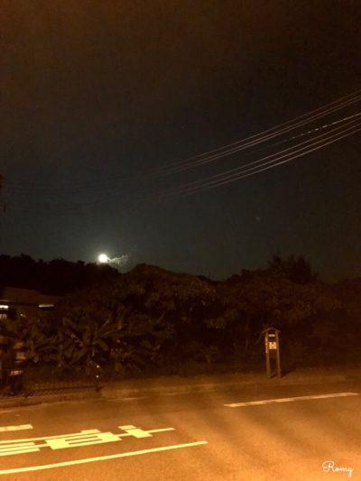 西表島を夜お散歩