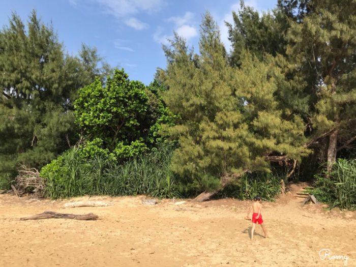 「ホテル ニラカナイ西表島」から月が浜へ