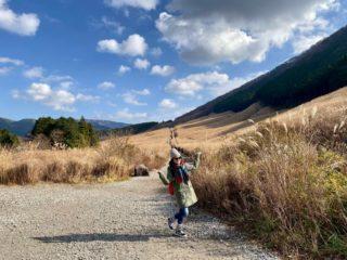 箱根へ大人の遠足!日帰りで仙石原ススキ草原へ。12月でもまだまだ美しい